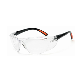 Radnor Action Series Safety Glasses With Clear Frame And Clear Anti-Fog Lens