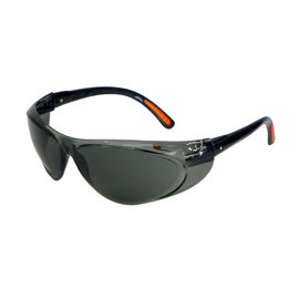 Radnor Action Series Safety Glasses With Clear Frame And Gray Lens