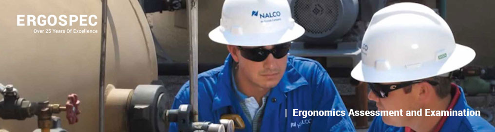 Nalco Ergonomic Assessment